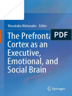The prefrontal cortex as an executive, emotional and social brain