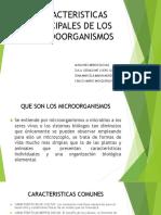 Caracteristicas Principales de Los Microoorganismos