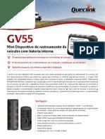 GV55 PT 20140617
