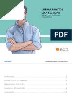Liderar Projetos Lean Six Sigma 2