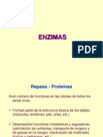 FB-8-Enzimas-17