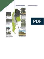 Bosques Nativos y Regiones Forestales