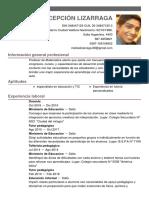 Matias Concepcion Lizarraga CV 1.pdf