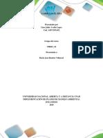 Informe Componente Practico Fase 5 y 6