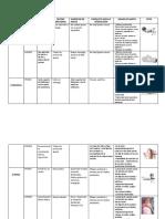 ONTOGENESIS LAB.pdf