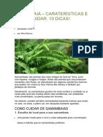 SAMAMBAIA.docx