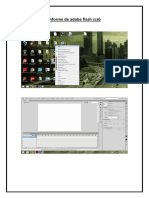 Informe de Adobe Flash Ccs6