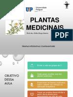 AULA 02 - Terapias Complementares - Plantas Medicinais