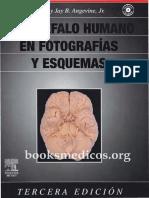 00247El.Encefalo.Humano.en.Fotografias.y.Esquemas_booksmedicos.org.pdf