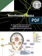 6. Neurofisiología Básica.ppt
