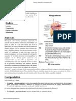 Dermis - Wikipedia, La Enciclopedia Libre