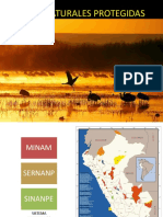 5. ÁREAS NATURALES PROTEGIDAS.pdf