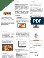 Los-Glucidos-Triptico.docx
