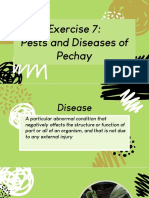 Hort-20-Pests-and-Diseases.pdf