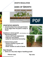 Hort 20 Lec 4 Phases of Growth.pptx OK