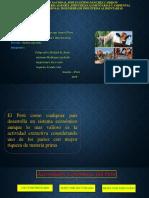 Expocision de Actividades Productivas de Peru