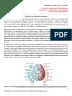 1. Hemisferos Crebrales Funciones, Ondas y Capacidades