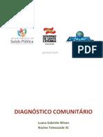Introdução a Profissão Vig. Sanitária Diagnóstico Comunitário (2)