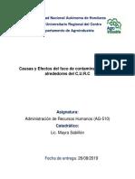 Informe Admon Recursos Humanos Completo