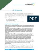 TeachingForUnderstanding_LitReview.pdf