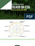 AULA 2 - ANÁLISE MORF. +E FIGURAS DE LINGUAGEM