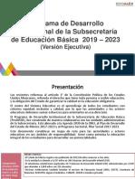 ProDISEB_Resumen ejecutivo__1 Agosto.pdf