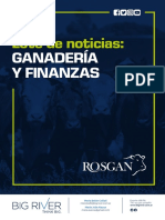 Informe de Rosgan