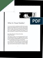 James Elkins. What is visual studies?