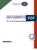 Cours Audit Comptable Et Financier