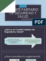 Comité Paritario de Seguridad y Salud
