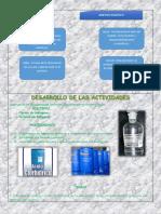 analisis de proyecto comunitario cuntico.docx