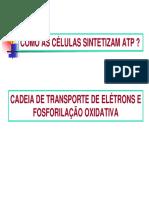 04 Fosforilacao oxidativa