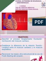 Ciclo-cardíaco