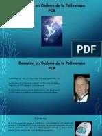Presentaci N-PCR