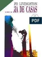 Cirugia_de_casas.docx