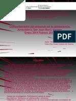 11presentacion Embarazo en Adolescencia La Silsa 2014-2015