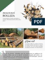 MADERA ROLLIZA-1.pptx