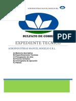 Expediente Tecnico Planta de Sulfato de Cobre Inprimirx