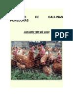 Proyecto de Gallinas Ponedoras 10