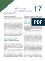 Cap 17 El ciclo del ácido cítrico el catabolismo de la acetil-CoA HARPER Bioquimica Ilustrada 28a Ed
