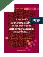 Medicion Metacognitiva Ok