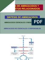 Biosíntesis de Aminoácidos (2)