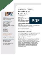 Curriculum Vitae Andrea Bohorquez.pdf
