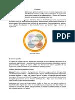 Informe Adm de Empresas El Entorno