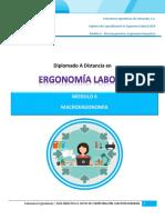 Macroergonomia