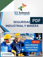 Diapos Modulo01 Seguridad Industrial y Minera
