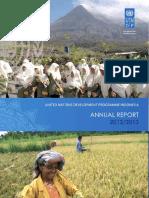 UNDP Annual Report