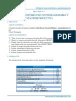 Distribución de Permeabilidades y Capacidad Productiva - Simulacion de Reservorios