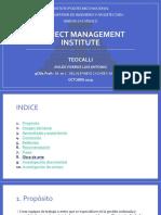 Project Management Insititute