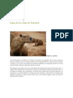 Fauna de Los Llanos de Venezuela